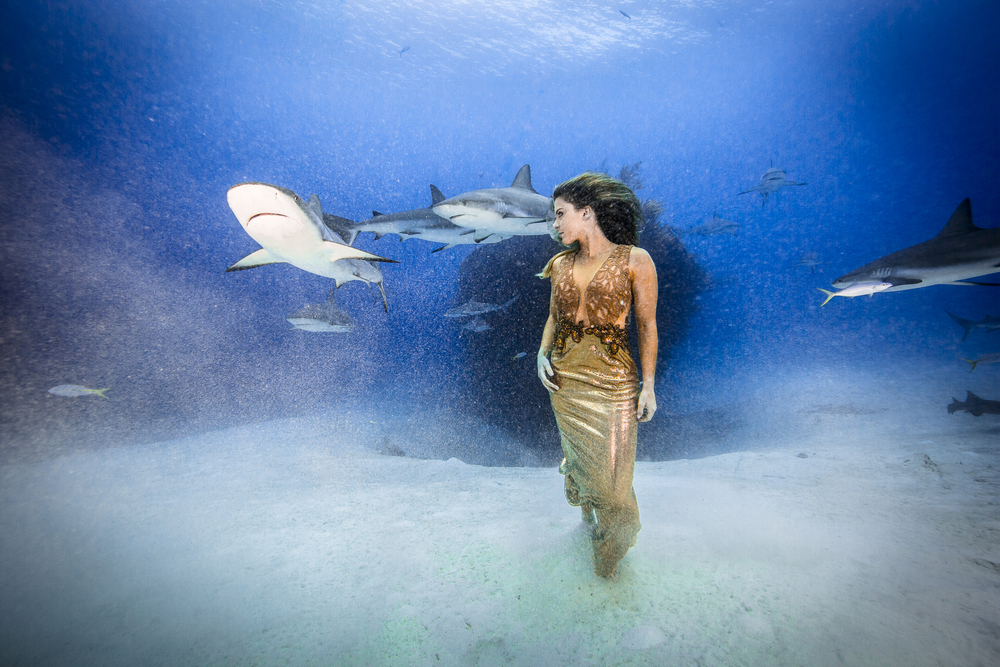 AleSocci-GreenPixel_Bahamas_2015-12.jpg