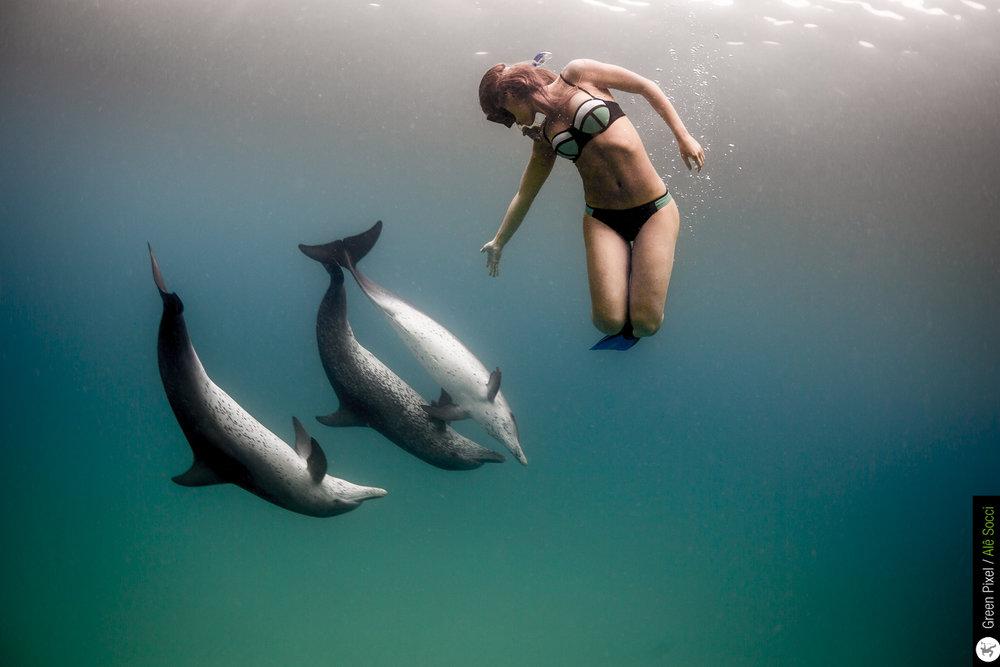 AleSocci-GreenPixel_Bahamas-93.jpg