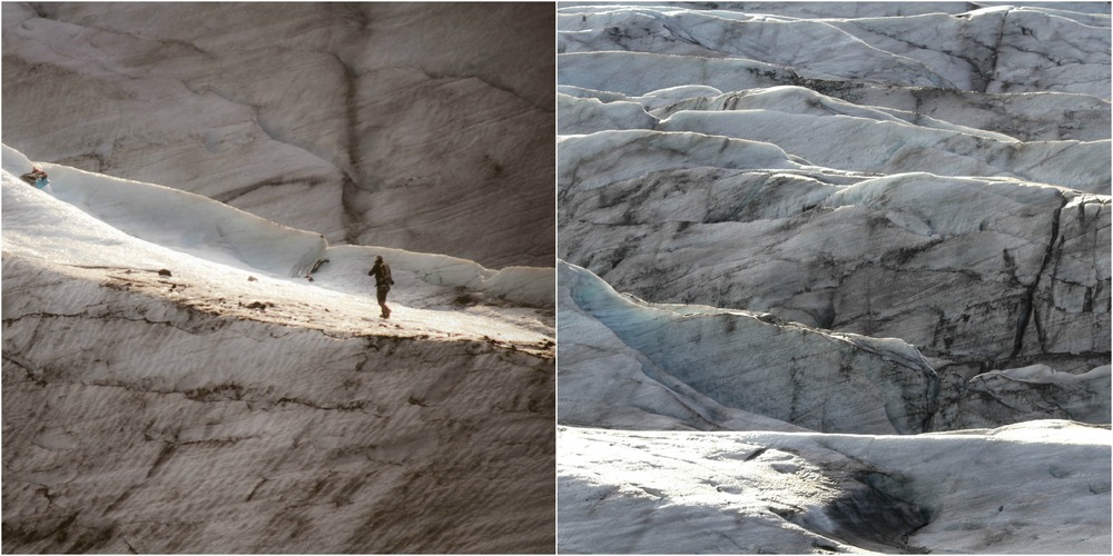 Glacier Collage.jpg