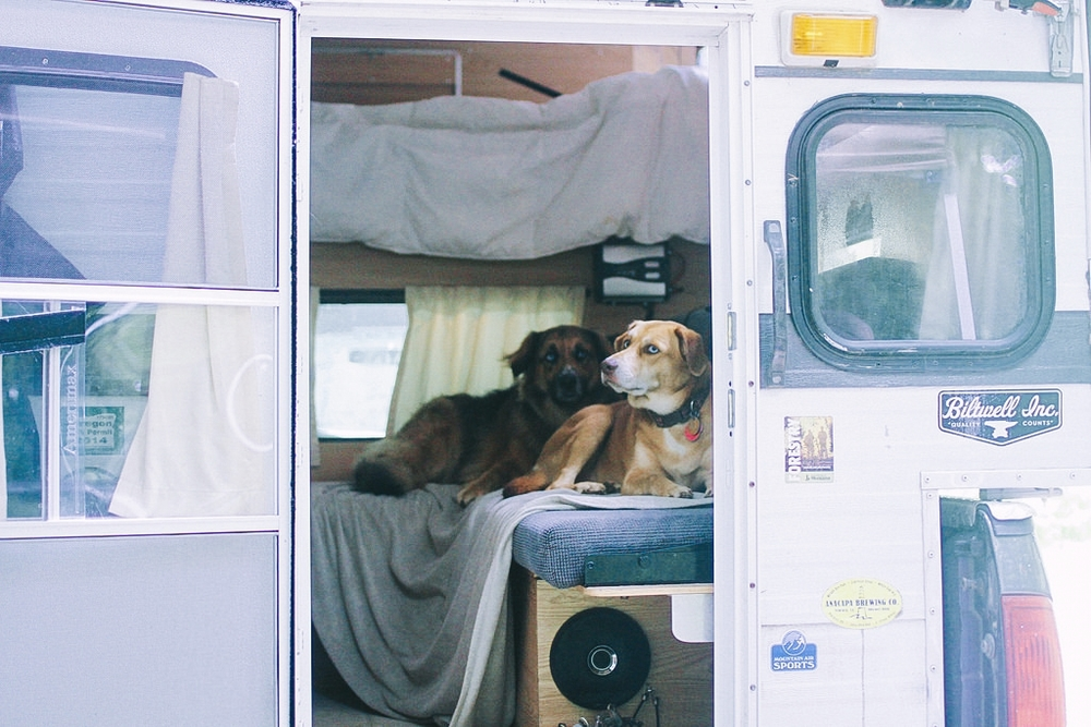 Fitz and Malta in new camper