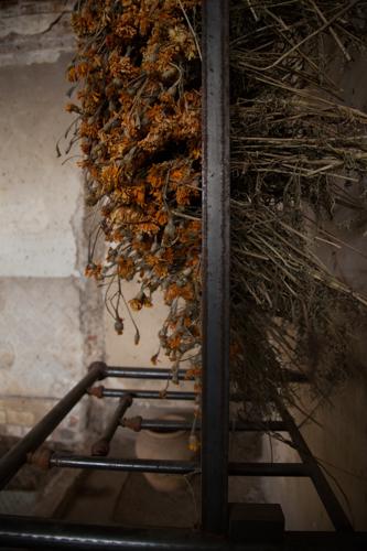 Oaxaca Blog Vert-5358.jpg