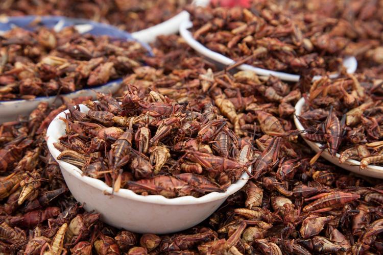 Oaxaca Blog Hor-3755.jpg