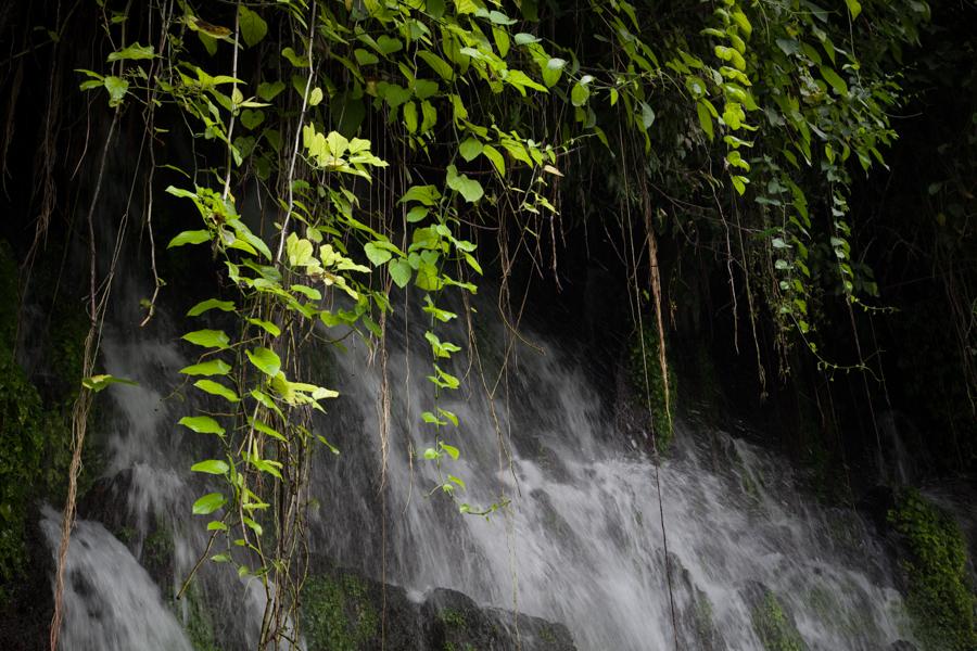 Blog Hor El Salvador-8483.jpg