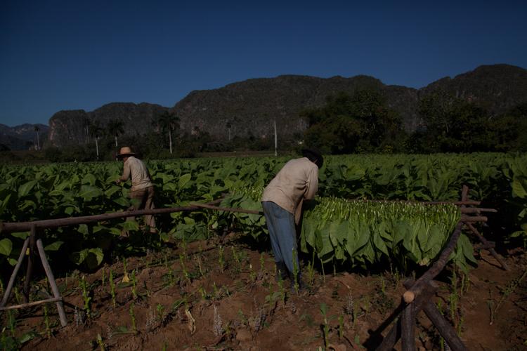 Cuba Blog Hor-0364.jpg