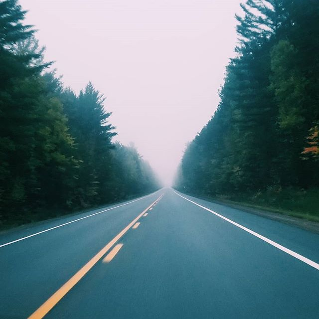 Foggy morning drive #lanaturaleza #canada #quebec