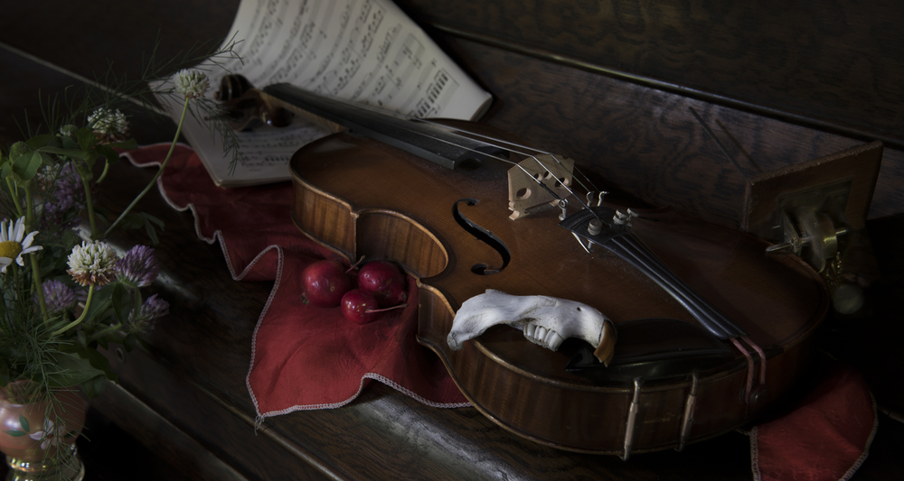 Ober_musician_193.jpg