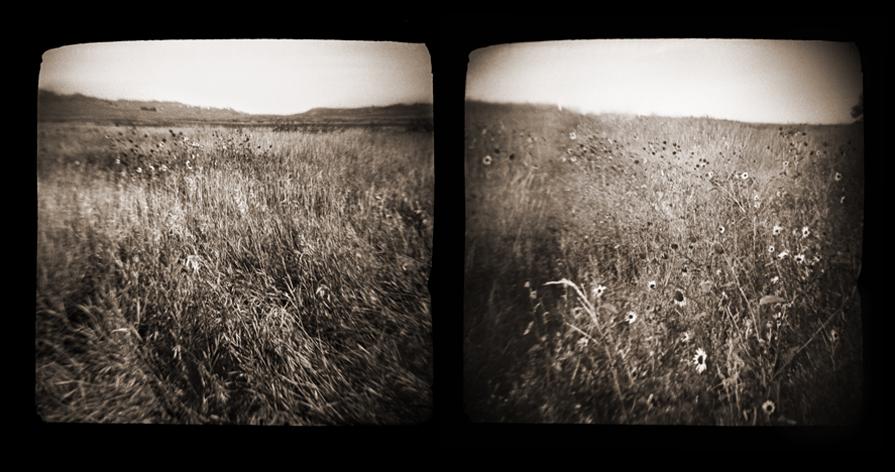 prairie002.diptych.jpg