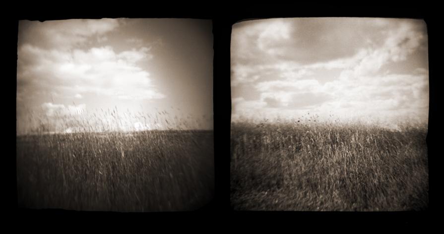 prairie001.diptych.jpg