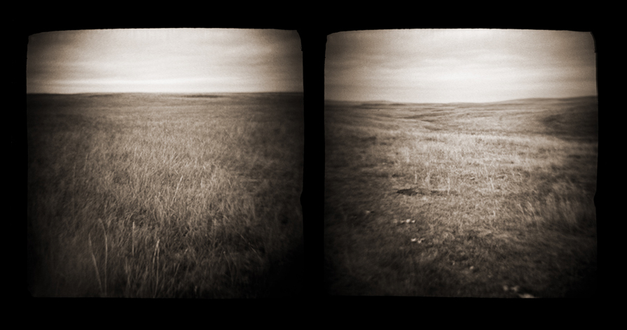 prairie003.diptych.jpg