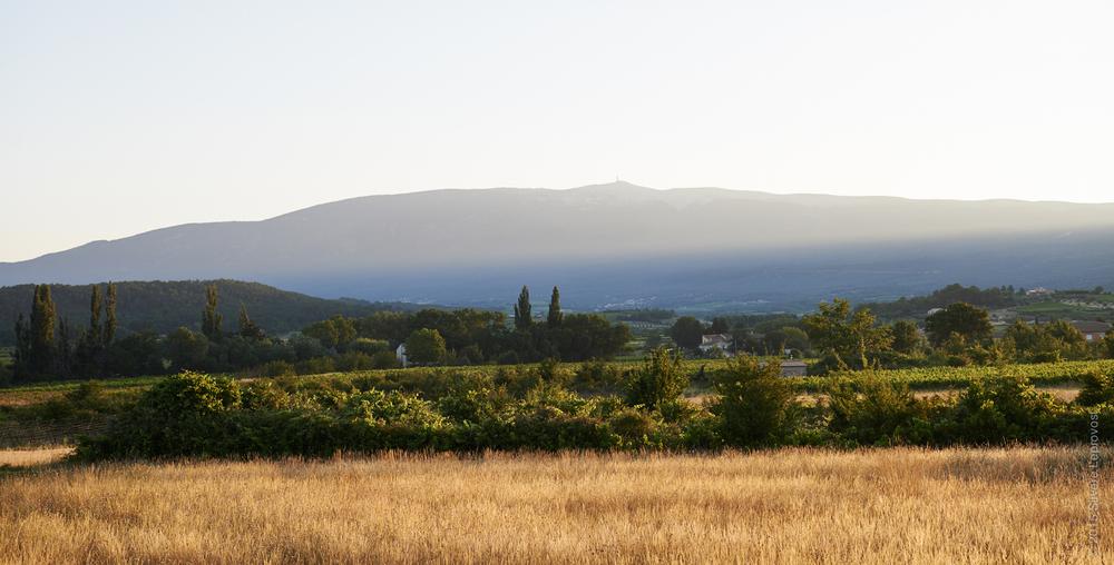 Le Mont Ventoux au levé du soleil - vue de Saint-Estève où est installé Marc Valentini domaine du Grand Vallat