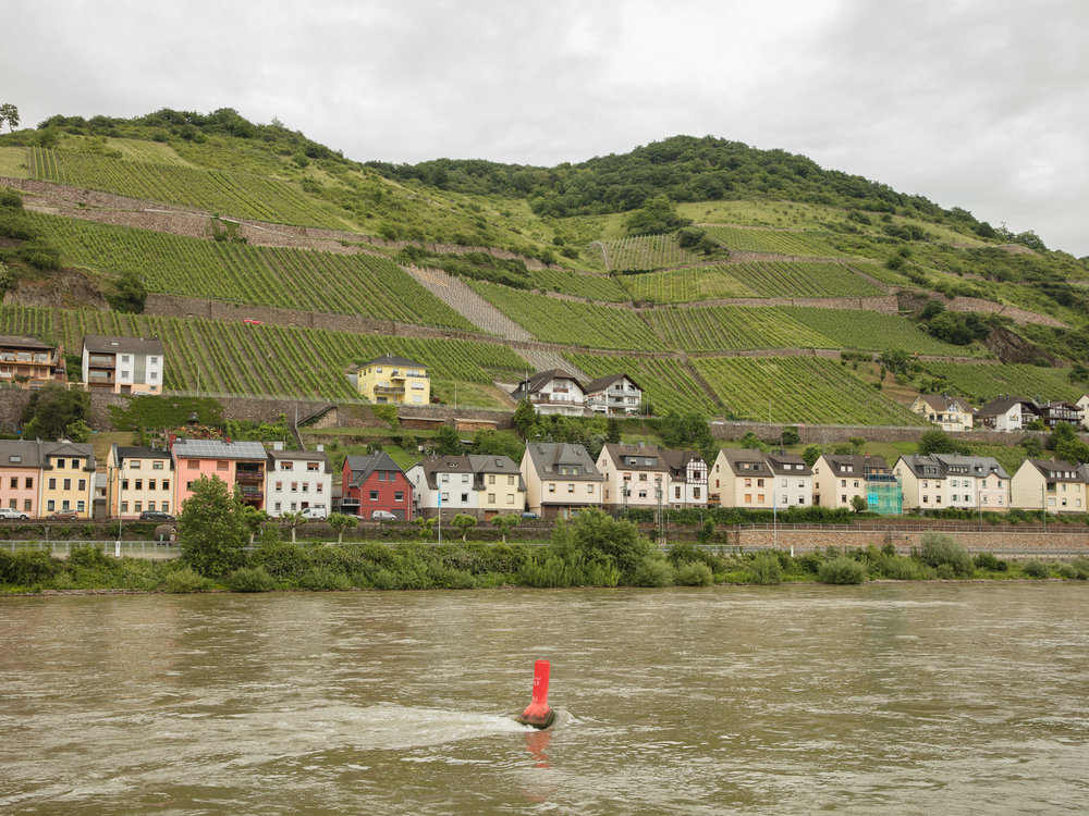 Jamie Kripke_Down the Rhine_31.jpg