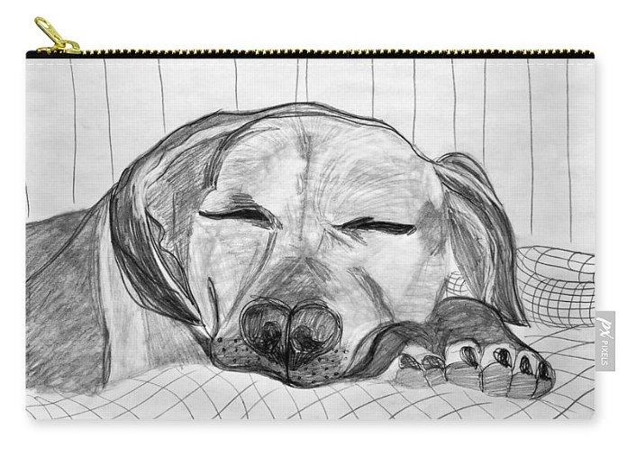 Django Napping Pouch.jpg