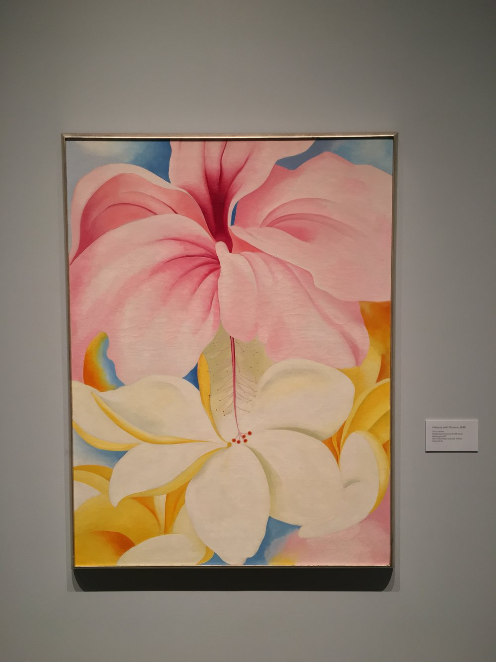 """Hibiscus with Plumeria"" (1939) by Georgia O'Keeffe at NYBG"