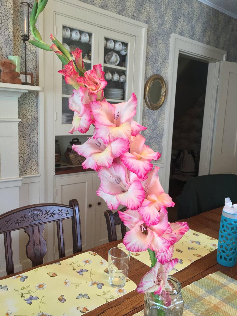 Gladiolus at Sewall House Yoga Retreat, Maine