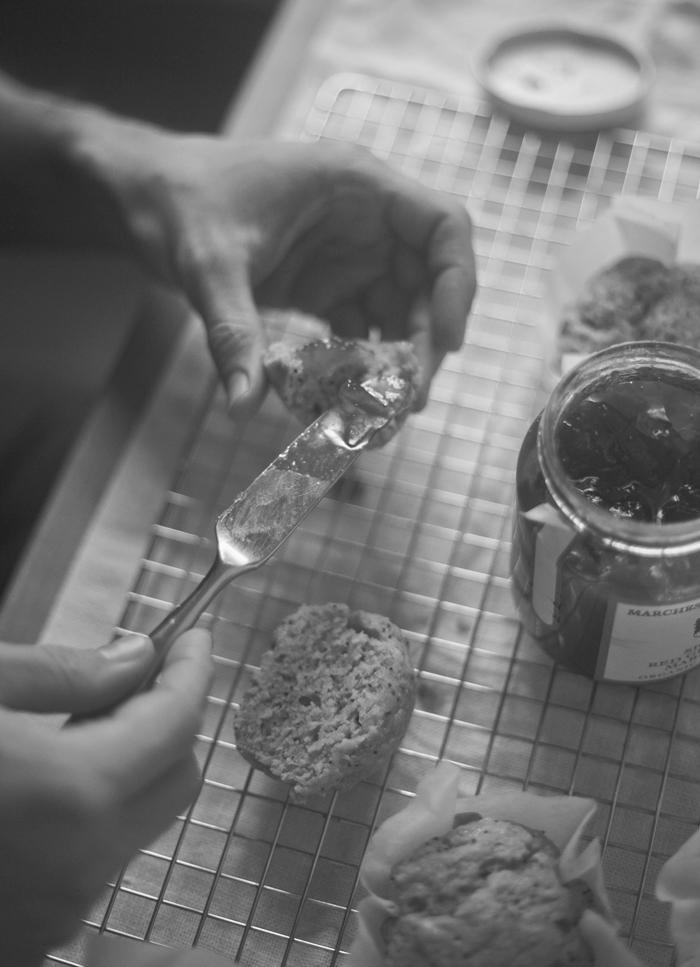 Lemon-Ricotta-Poppyseed-Muffins_JG__0046.jpg