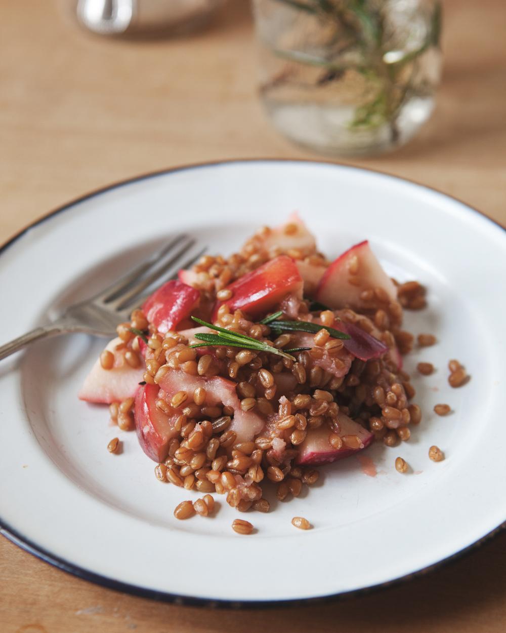 Warm-Rosemary-Apple-Wheatberry-Salad_03.jpg
