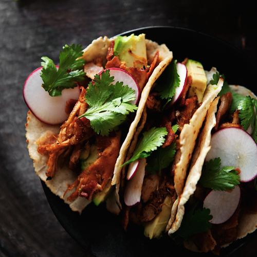 Ancho Chile Pulled Chicken Tacos in Homemade Corn Tortillas