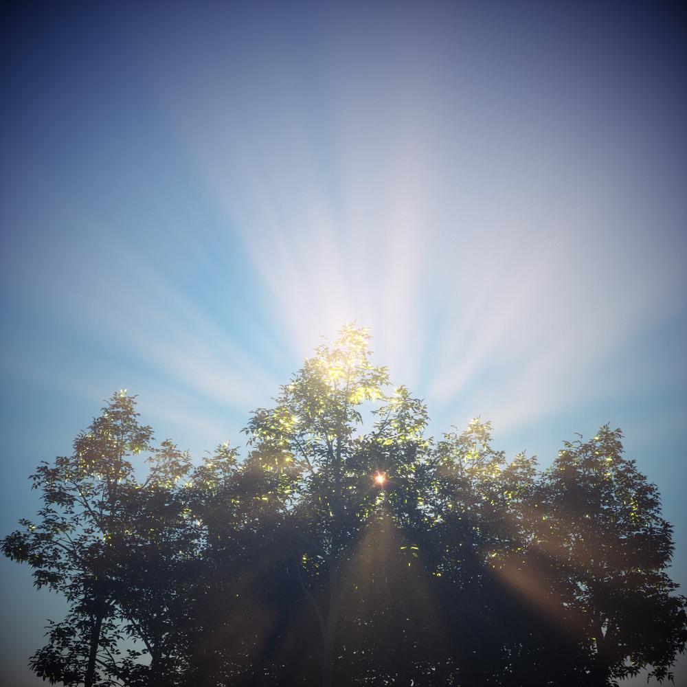 TreeFog_v2.png