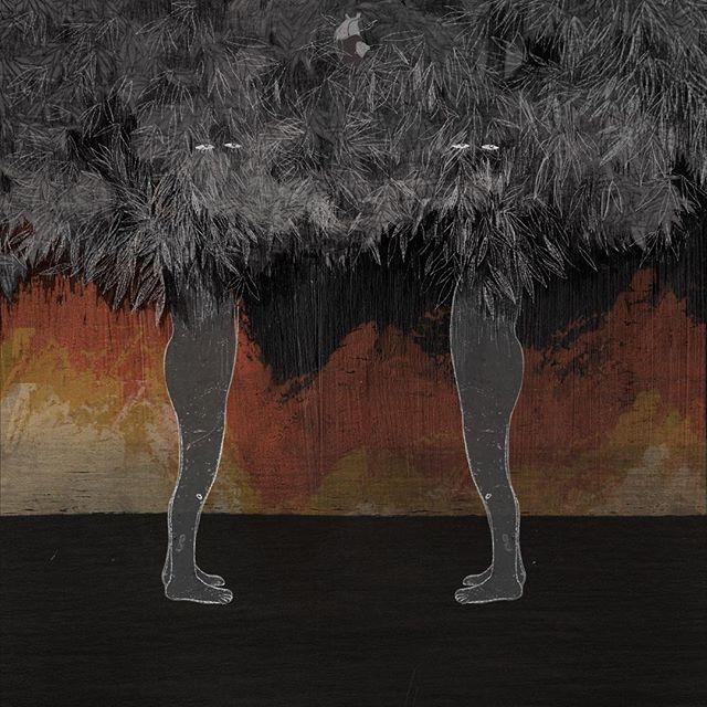 O. Observarse: Examinarse enfrentándose atentamente bajo la sombra, entre las ramas, cerca a las llamas.