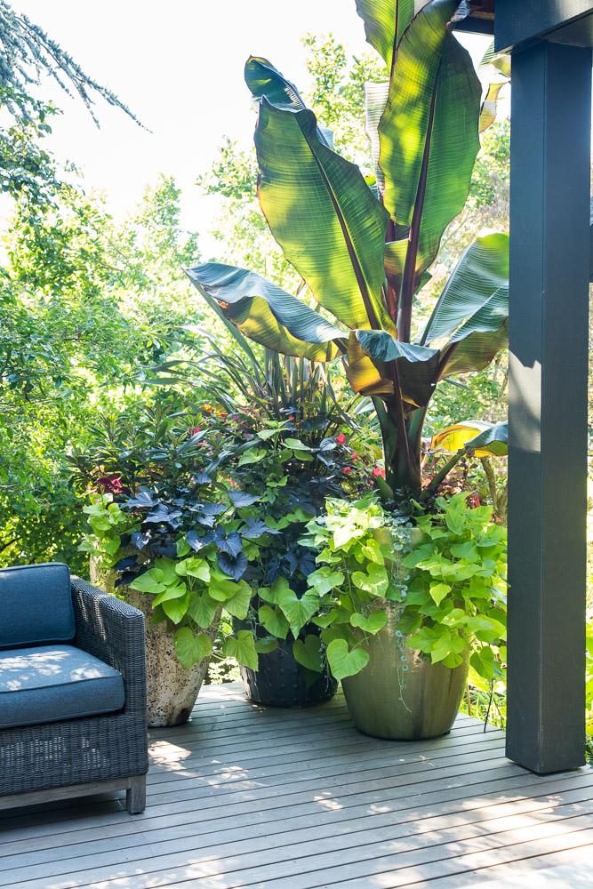 Laurelhurst-residence-remodel-paul-moon-design-seattle-35060.jpg