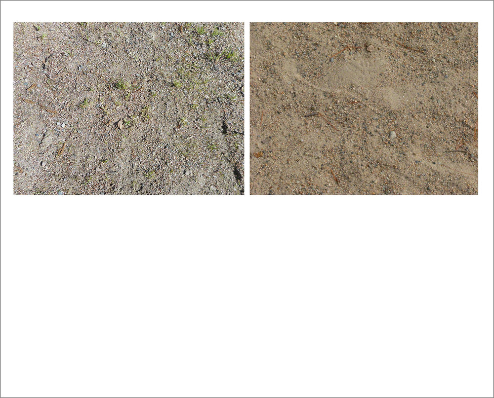 N_Haselbacher_Sand.jpg