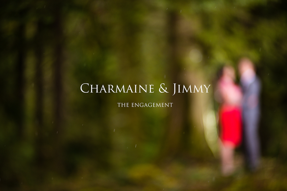 charmaine_jimmy_engagement