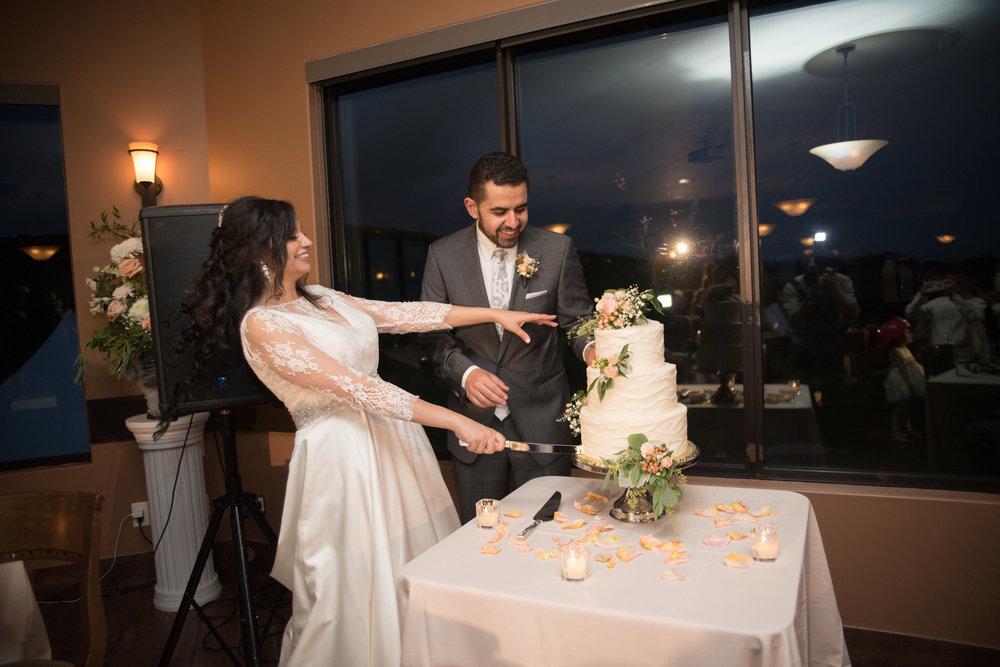 monica_abraam_wedding_2016-270.jpg