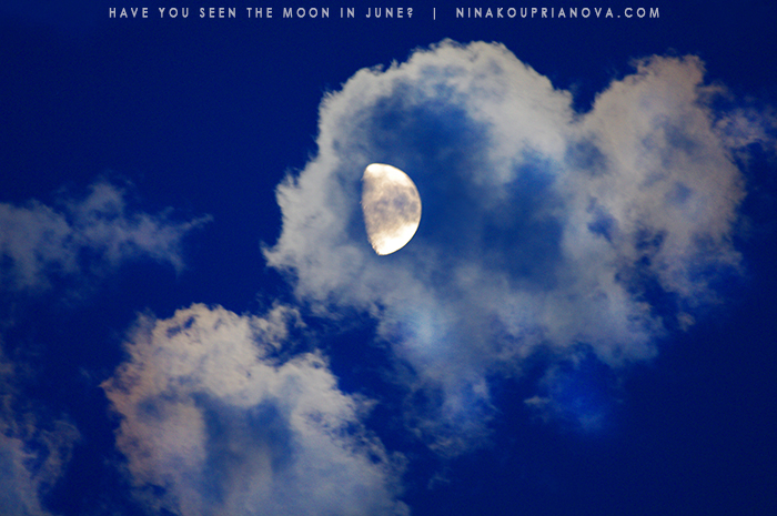 june moon 2 700 px with url.jpg