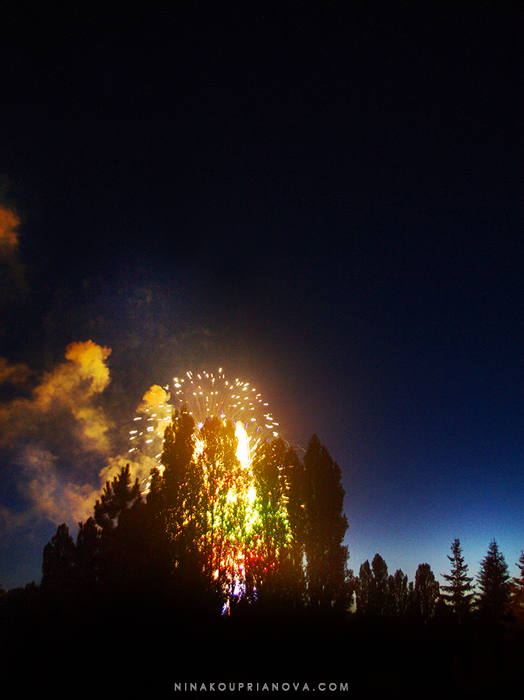 fireworks finale 2 700 px with url.jpg