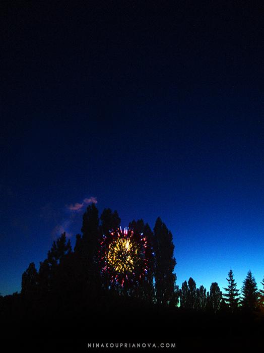 fireworks 11 700 px with url.jpg
