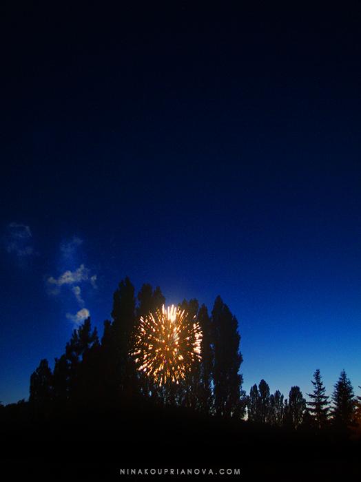 fireworks 6 700 px with url.jpg
