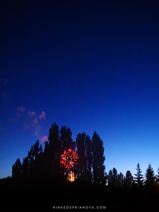 fireworks 7 700 px with url.jpg