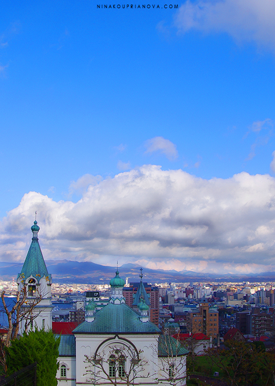 hakodate cityscape cropped 750 px with url.jpg