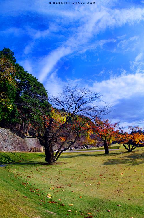 kanazawa castle wall 750 px with url.jpg