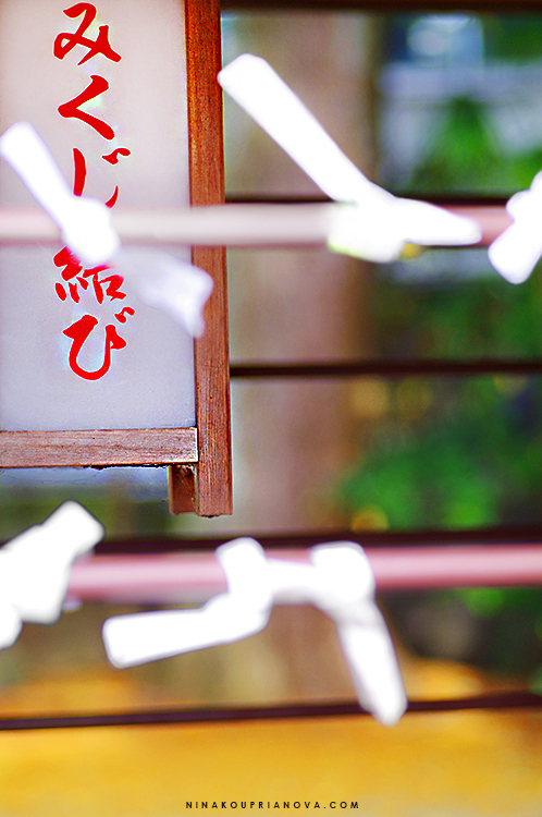 omikuji formatted 750 px with url.jpg