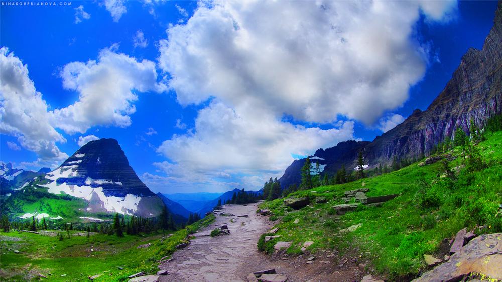 Summer peaks of the American Northwest