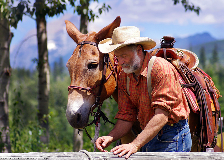 mule and man 750 px with url.jpg