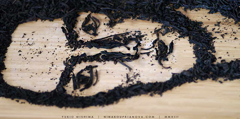 mishima closeup 2 800 px url.jpg
