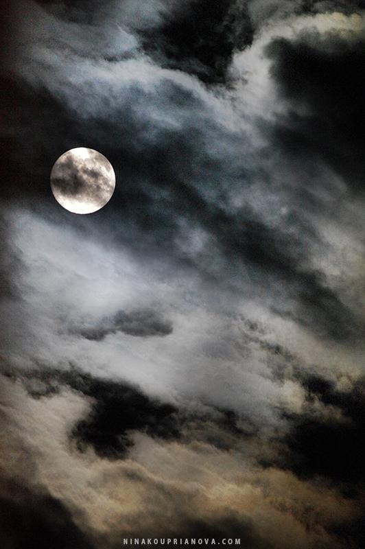 moon aug 19 b 800 px url.jpg