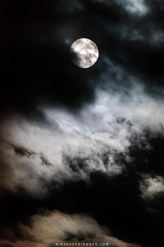 moon aug 19 e 800 px url.jpg