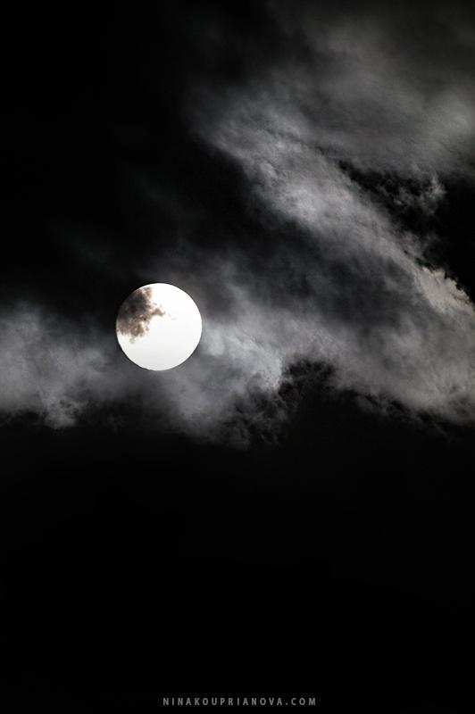 moon aug 19 h 800 px url.jpg
