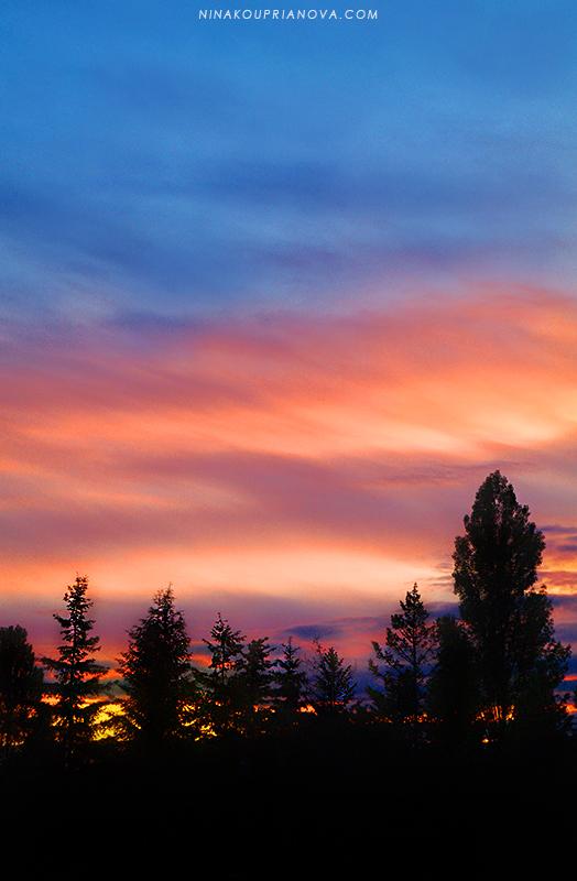 multicolored sunset 800 px url.jpg