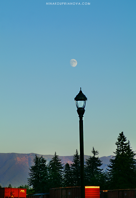 street light with moon 2 800 px url.jpg