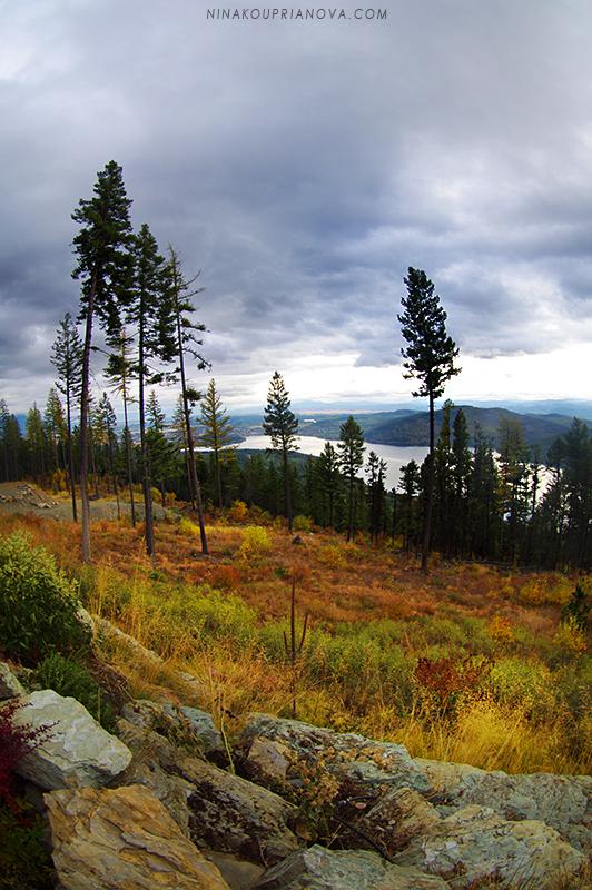 rocky mountain autumn 1 800 px url.jpg