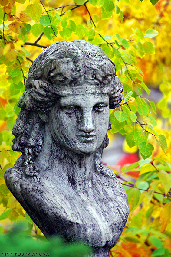 bust in autumn leaves 850 px url.jpg