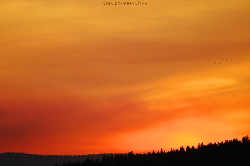 sunset october 15 b 800 px url.jpg