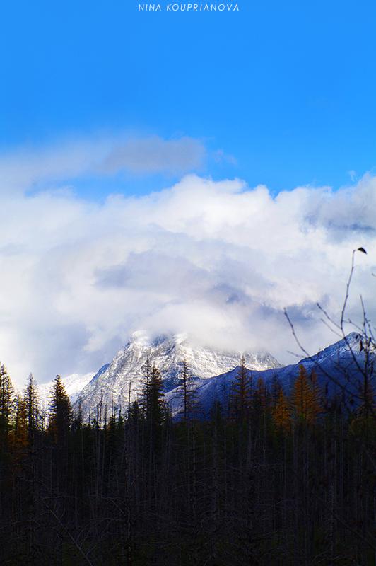 glacier park landscape 41 800 px url.jpg