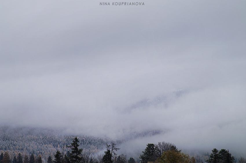 snow fog 5 850 px url.jpg