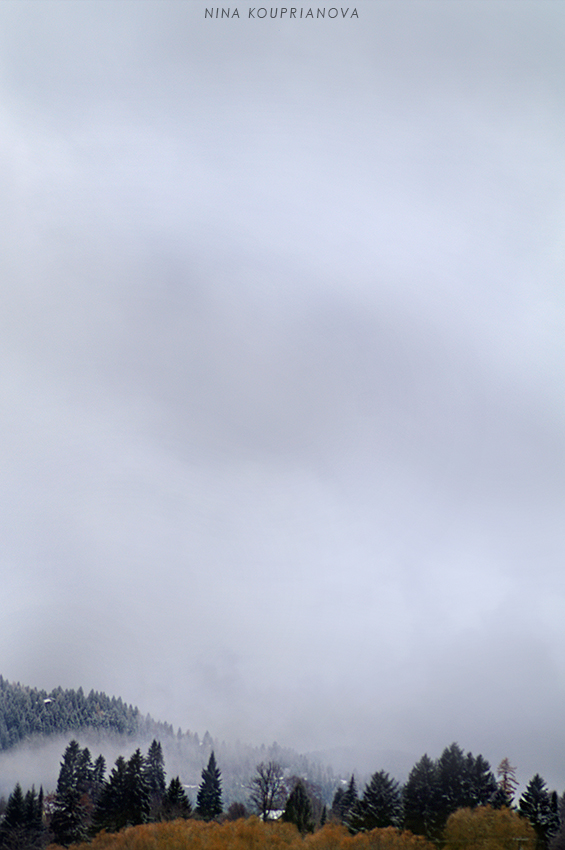 snow fog 4 850 px url.jpg