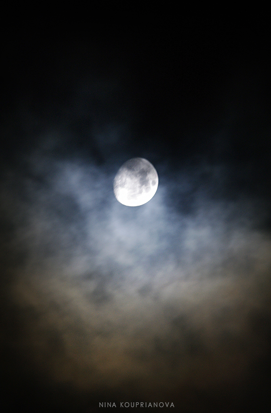 moon nov 13 850 px url.jpg